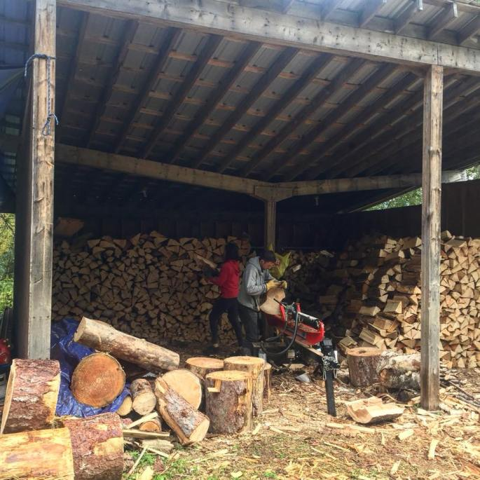 log splitting shed